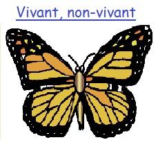 Vivant-non-vivant
